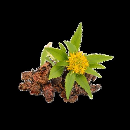 Rhodiola Rosea Spagyric Tincture