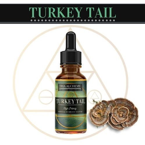 Turkey Tail Spagyric Tincture
