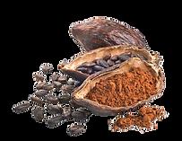 cacao-powder-extra-rich-organic-cacao-z-