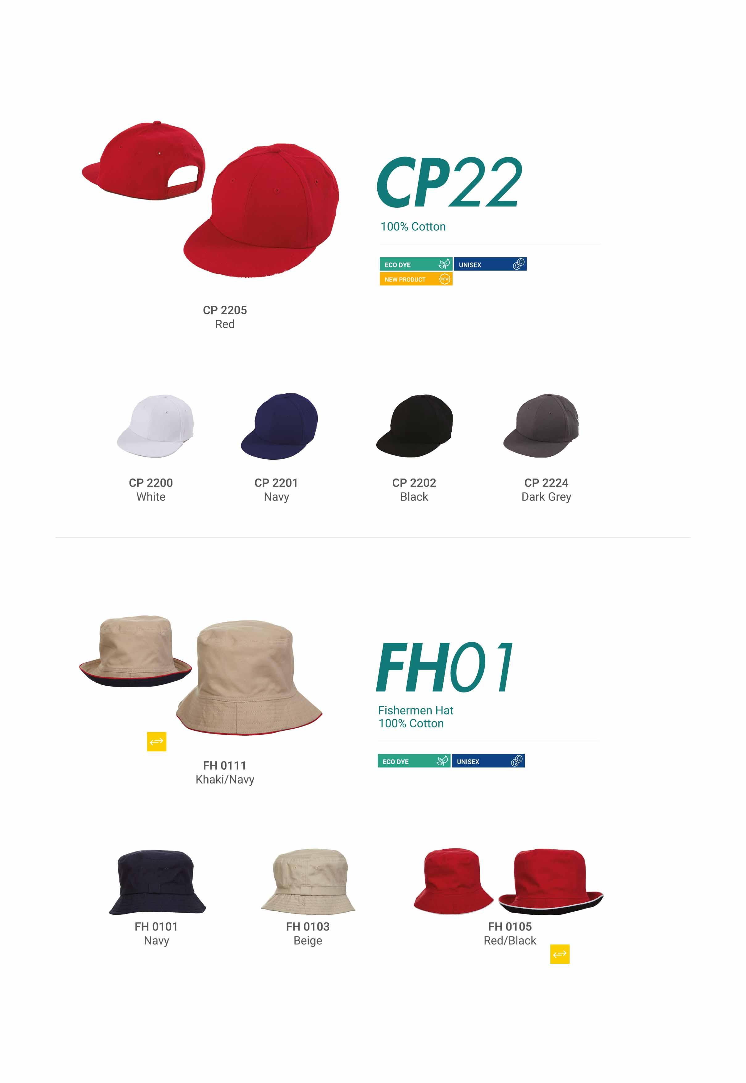 CP22 FH01