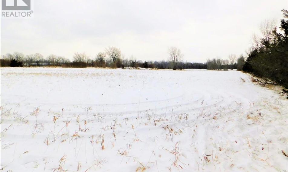 LAND PIC 3.jpg