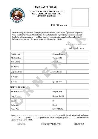 CKCDER Üye Kayıt Formu