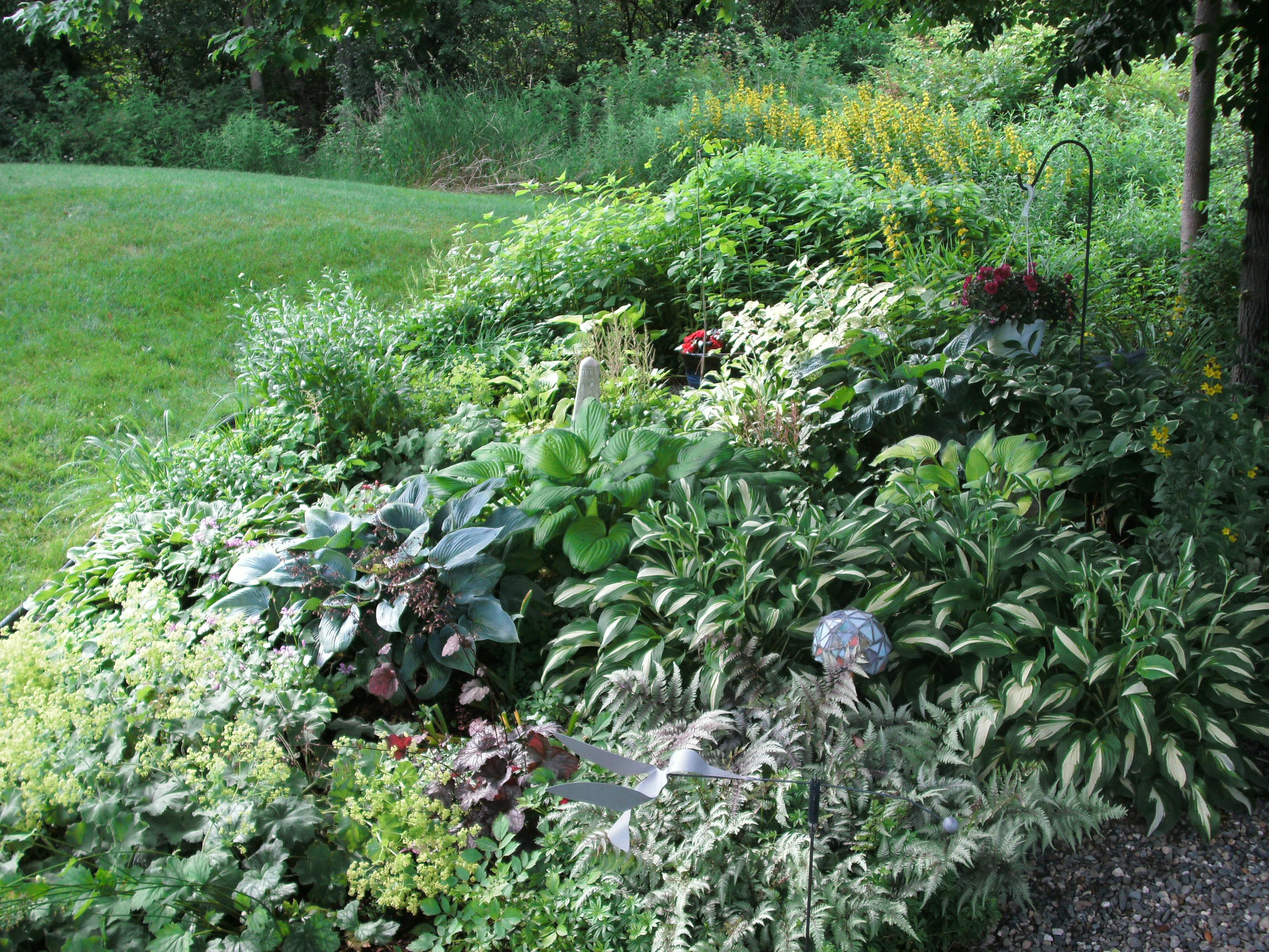 garden3-2