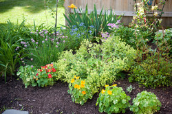 GardenTour_AHP2017-47