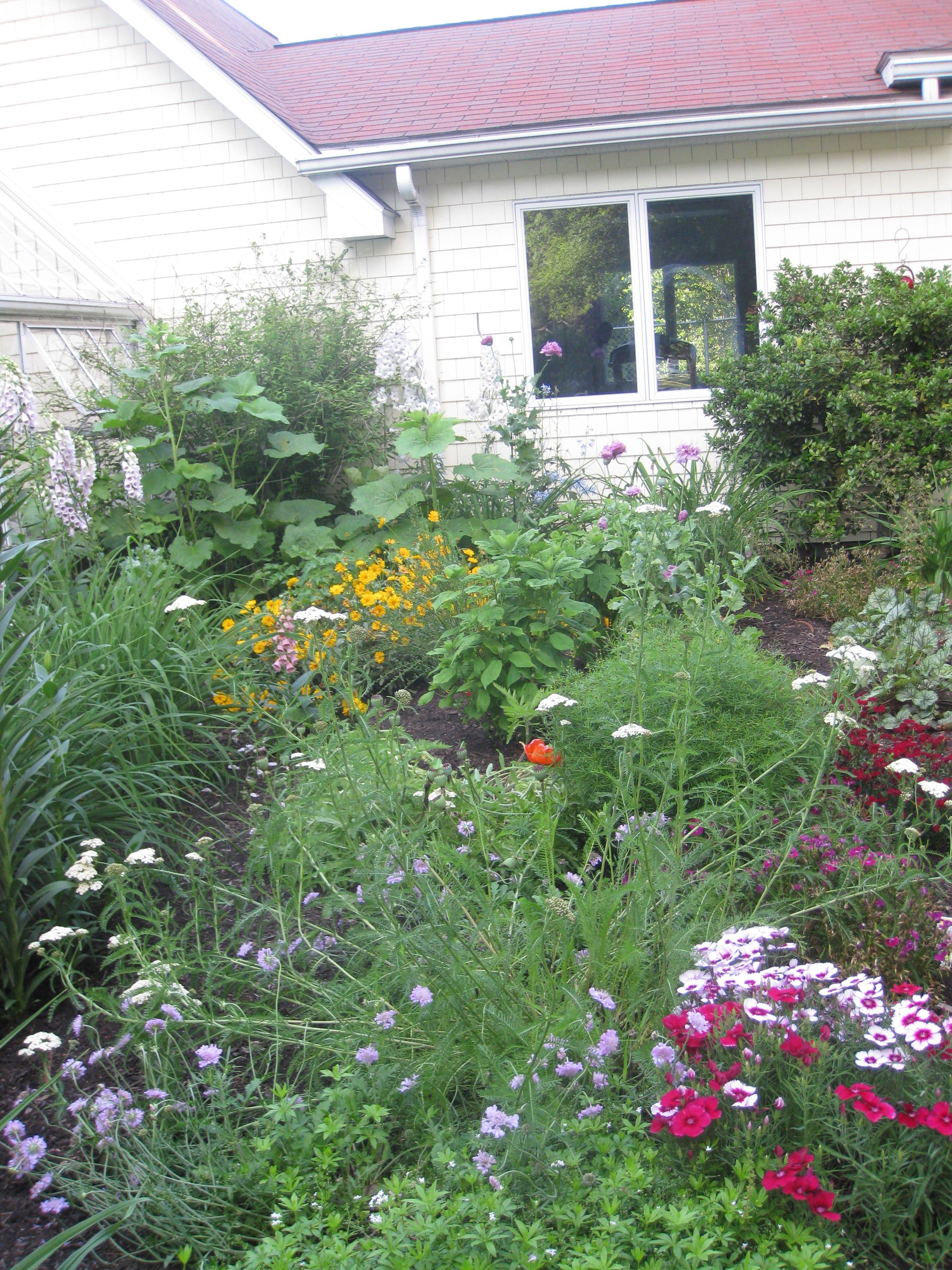 Garden-6-31