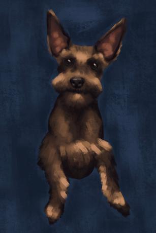 Pet Portrait: Marnie