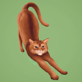 Pet Portrait: Stretch