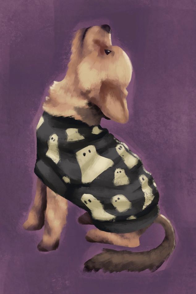 Pet Portrait: Chloe Howling