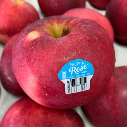 Pacific Red Rose Apple - NZ (Pack of 4)