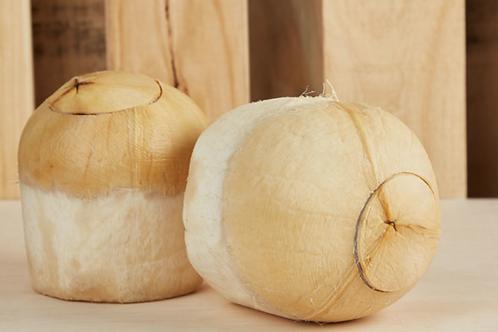 Thai Coconut (2pcs)