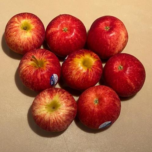 Gala NZ Apples (5pcs)