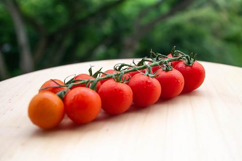 Cherry Tomato on Vine (500g)