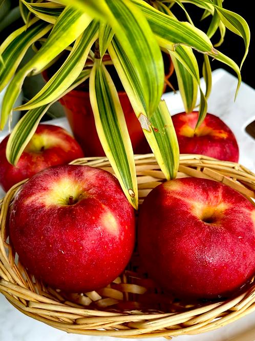 Envy Apple (2pcs) - NZ/USA