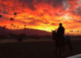 Sunrise at Santa Anita