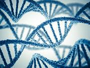 DNA-Stock-Image_22532584_SMALL-800x600.jpg