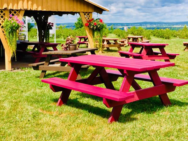 table-picnic-bord-de-l'eau-2---verger-en