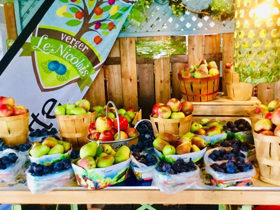 paniers-de-fruits---verger-en-image.jpg