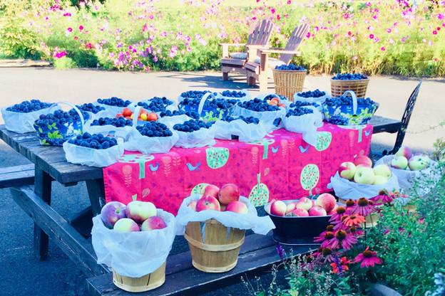 paniers-fruits---verger-en-image.jpg