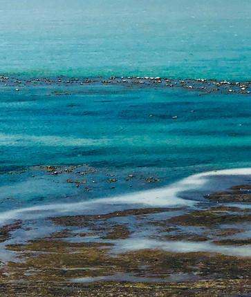 bord-de-l'eau---verger-en-image.jpg