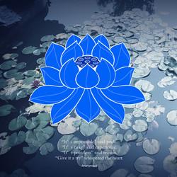 poster :Lotus pond