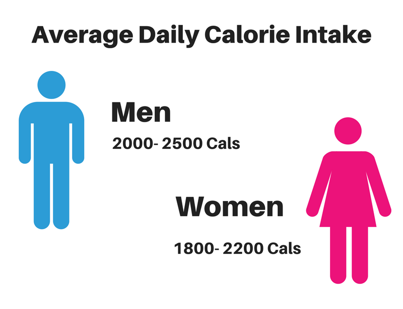 Average daily calorie intake