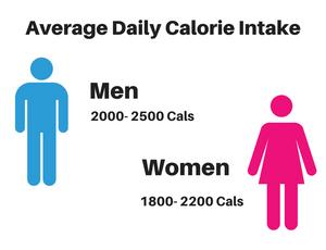 Average daily calorie intake