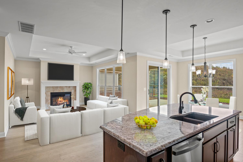 Nice Living Room Photo