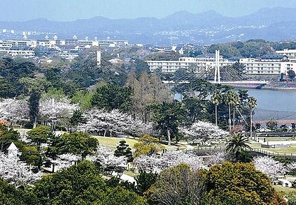 桜の先に住宅