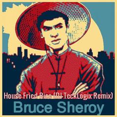 House Fried Rice (DJ TeckLogix Remix)