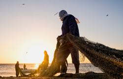 Fisherman of Fujairah