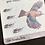 Thumbnail: Transparent Bible Journaling Stickers