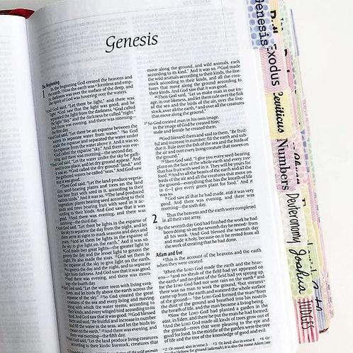 Bible Tabs Multi Color Watercolor Design Background
