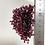 Thumbnail: 【ガーネット】50g  ワインレッドの輝き