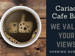 Cariad Customer Survey