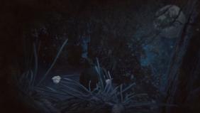 3 Moon Moon Moon - Leaking Rowboat - You