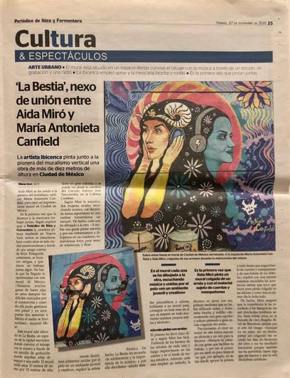 Periodico de Ibiza. November 27, 2020.