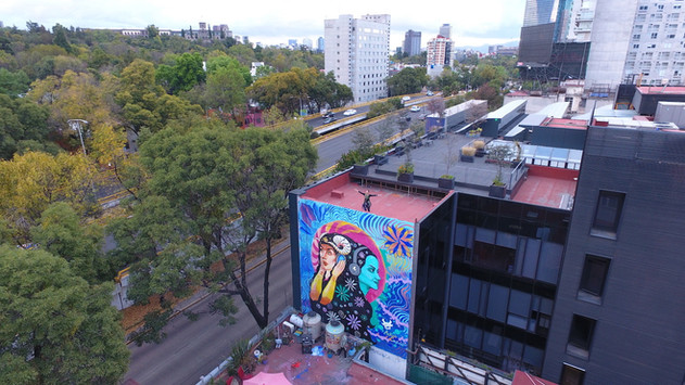 Mural at La Bestia, Mexico City. Collaboration with Antonieta Canfield. Acrylic & Spray paint. 12x9 meters. November 2020.