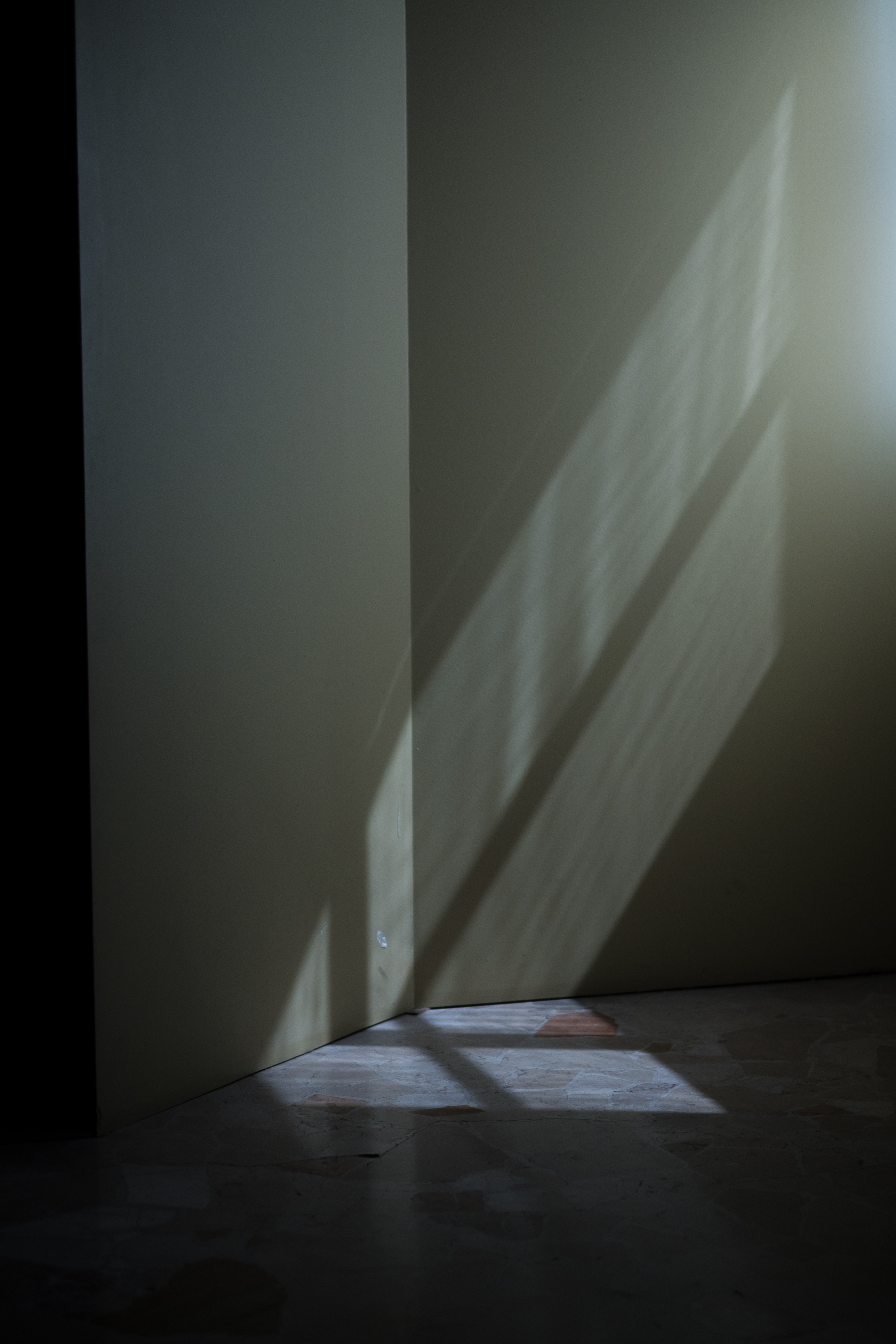 A Poetry of Shadow