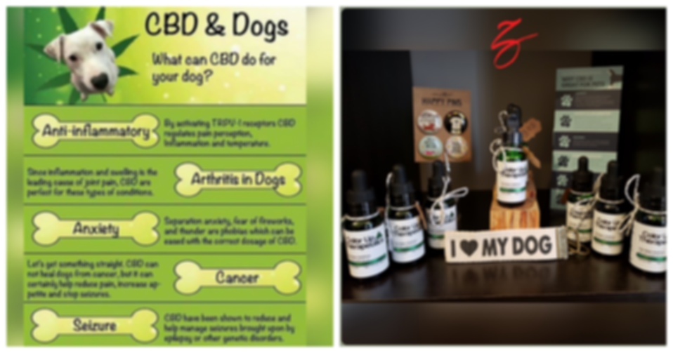 zen pet cbd display.png