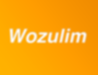 Wozulim.png
