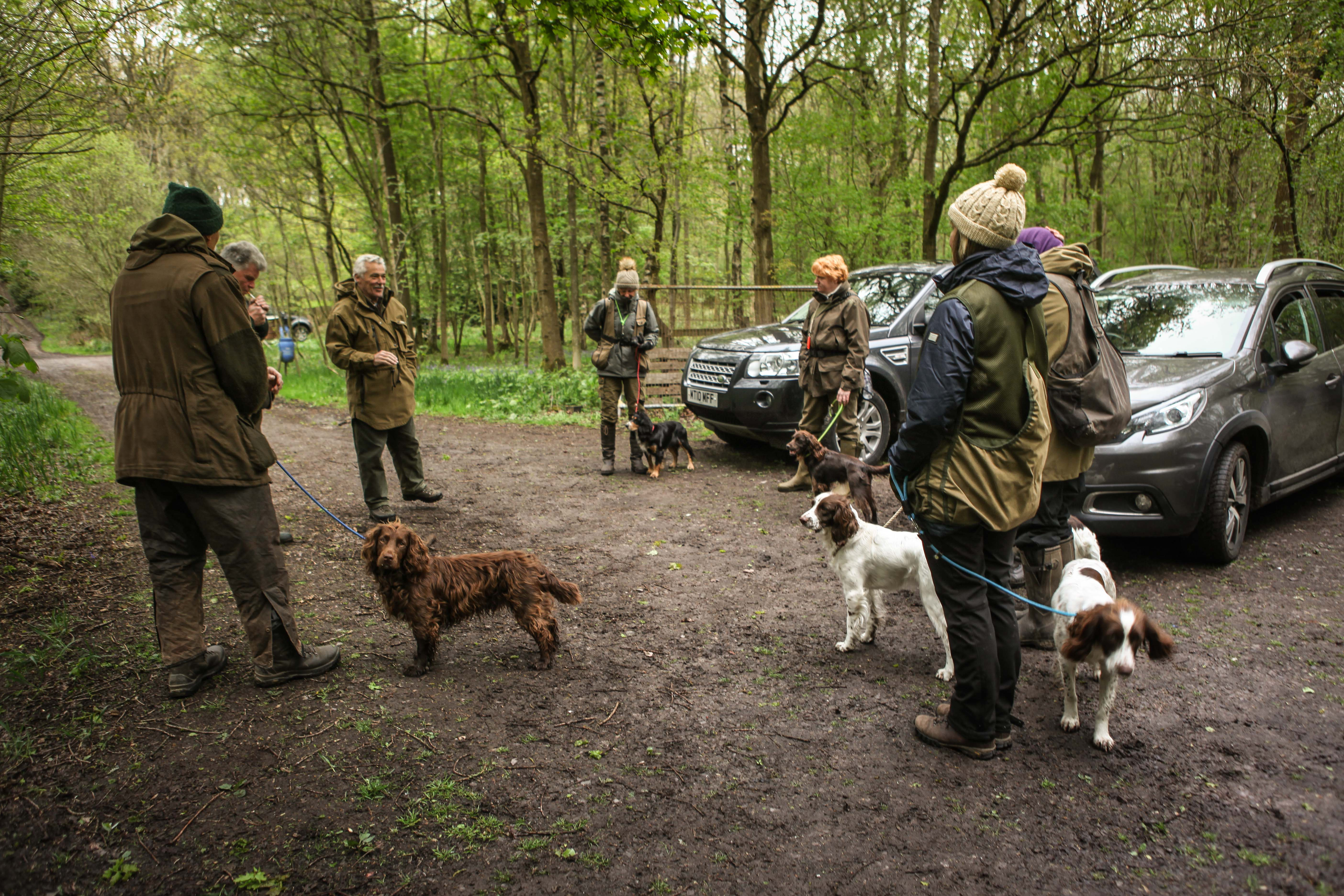 WGDS Spaniel Training Day with Steve Bat