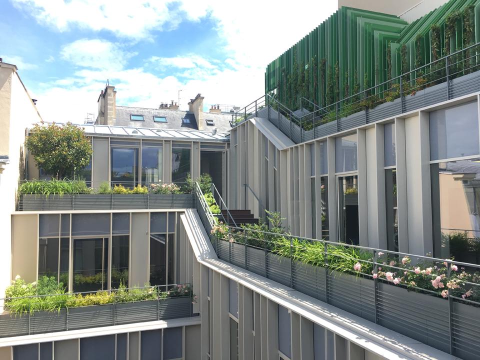 hd-facades-dtacc-architecture-mur-rideau (1)