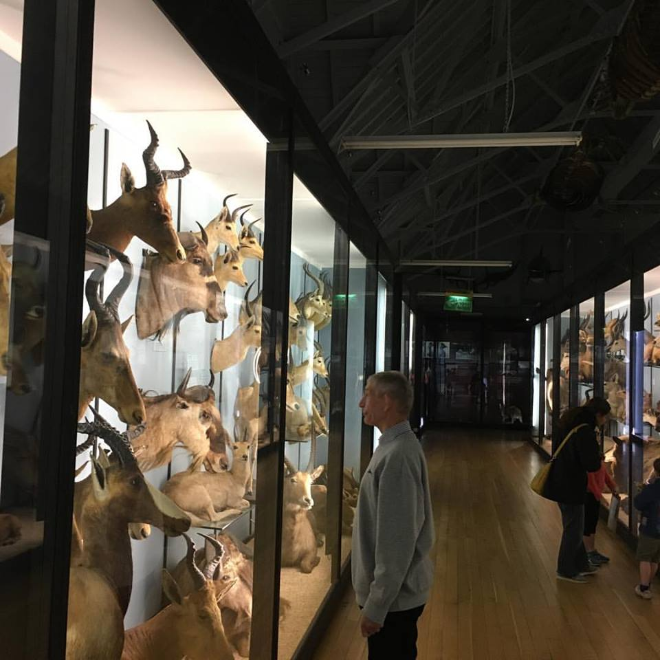 Museum trip