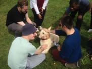 picnic and dog.jpg