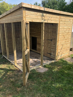 Dog kennel and run 3