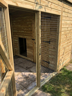 Dog kennel and run 2
