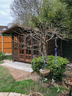 8x8 Summerhouse 1