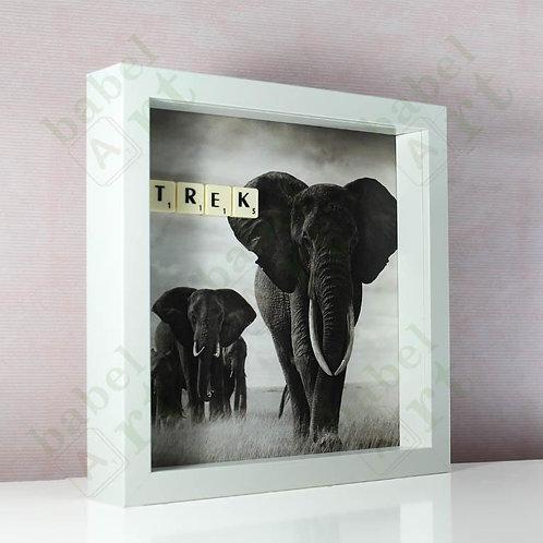 Trek - Elephants