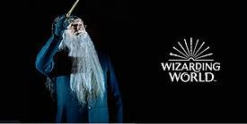 wizardworld_MPOVIL.jpg