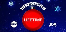 wonderful-lifetime-1-cover.jpg